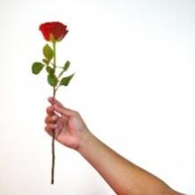 Amor Frases, Que Demuestran Sentimientos